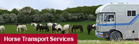 Horse Transport Services